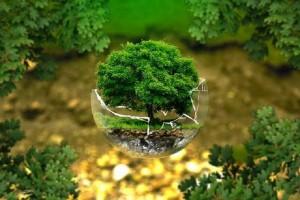 Eco-environnement avis