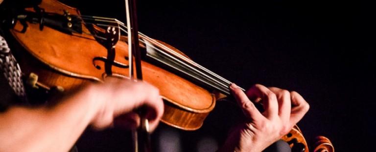 violon automne
