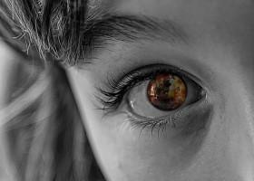 Sylvie Laroche Armee du Salut : Les 10 meilleures associations humanitaires dans le monde