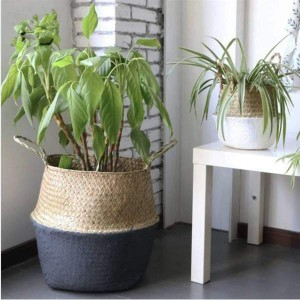 panier pour plante en osier