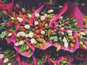 fleurs-chambre-froide